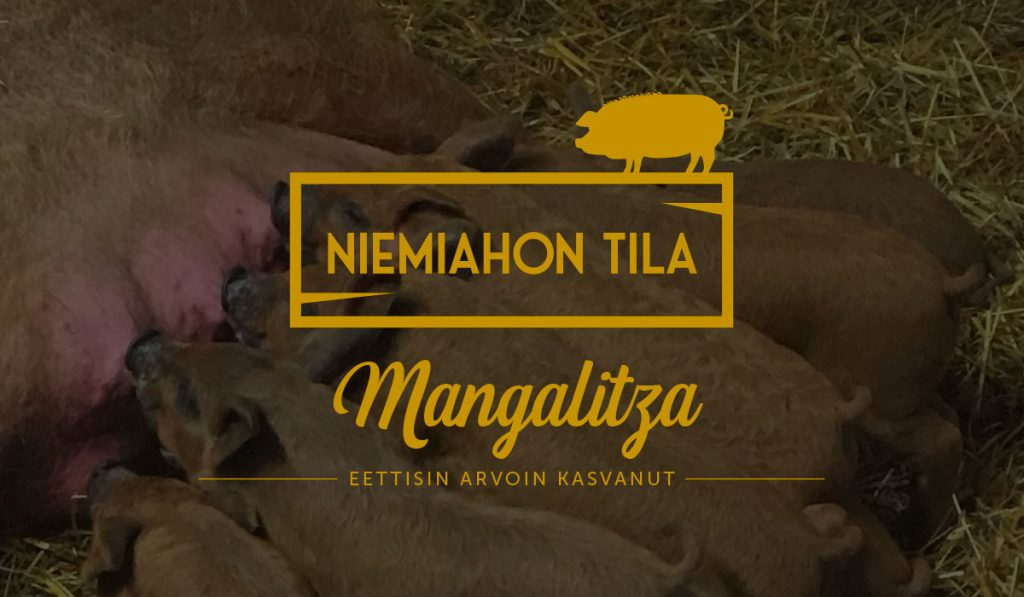 Mangalitza - Eettisin arvoin kasvanut